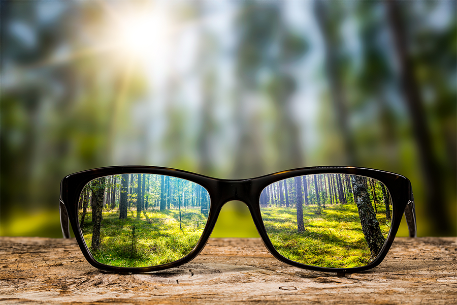 Image of sunglasses in a forest with the trees in focus through the lenses